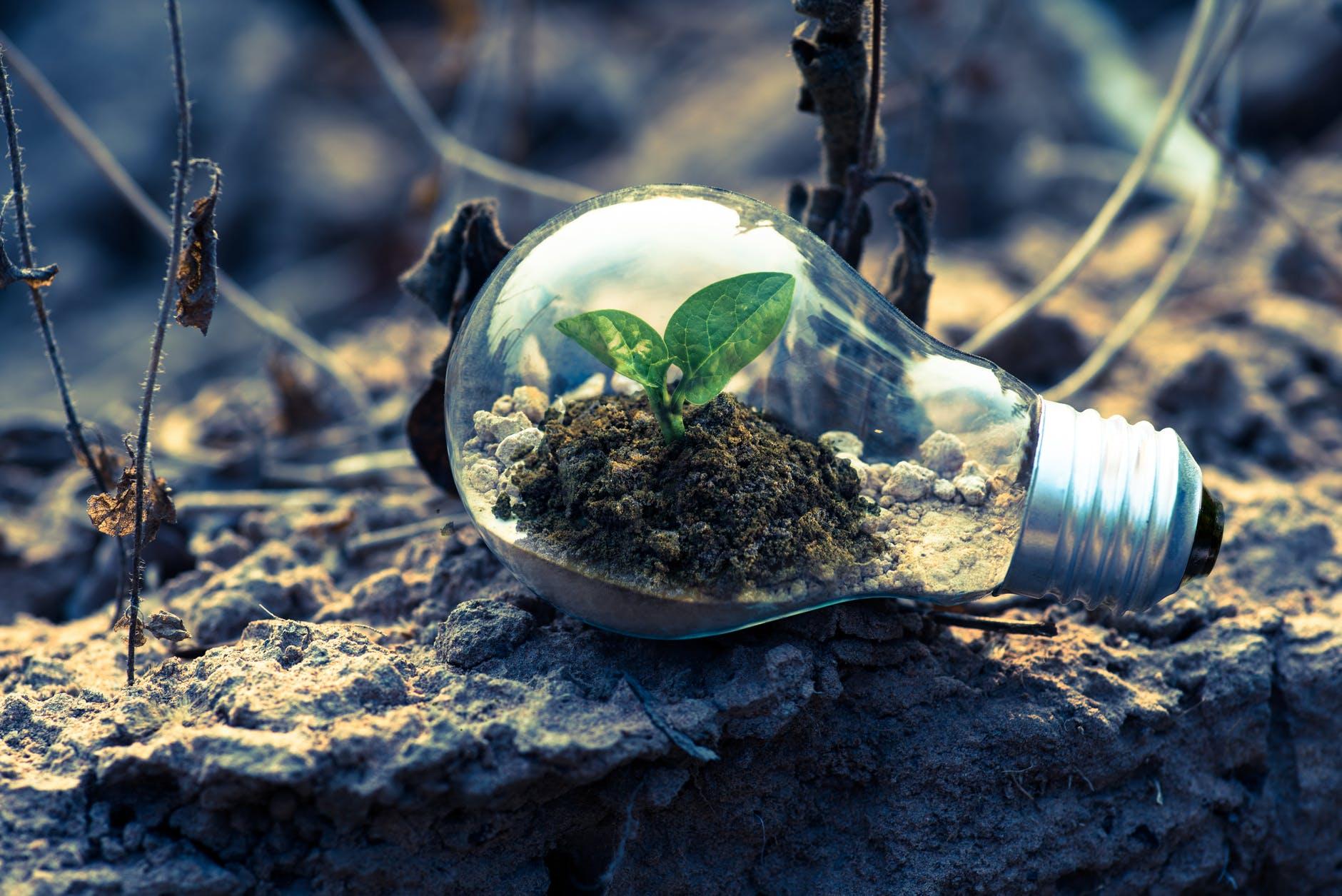 Πράσινη ενέργεια 1